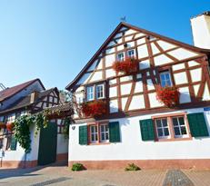 Weingut Pitthan in Zotzenheim