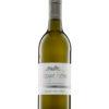 Sauvignon Blanc trocken Rheinhessen   Weingut Pitthan