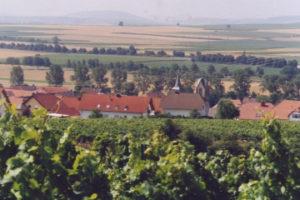Blick über Welgesheim | Rheinhessen