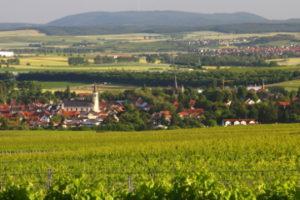 Sprendlingen in Rheinhessen | Weingut Pitthan