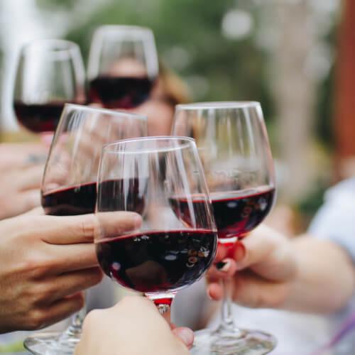 Weinsommer 2020 im Weingut Pitthan